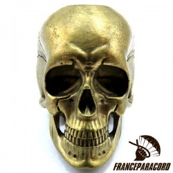 Anatomical Skull Bronze Massif