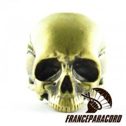 Jawless Skull
