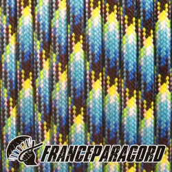 550 Paracord - Oceans on Fire